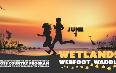 2019 Wetlands Webfoot Waddle