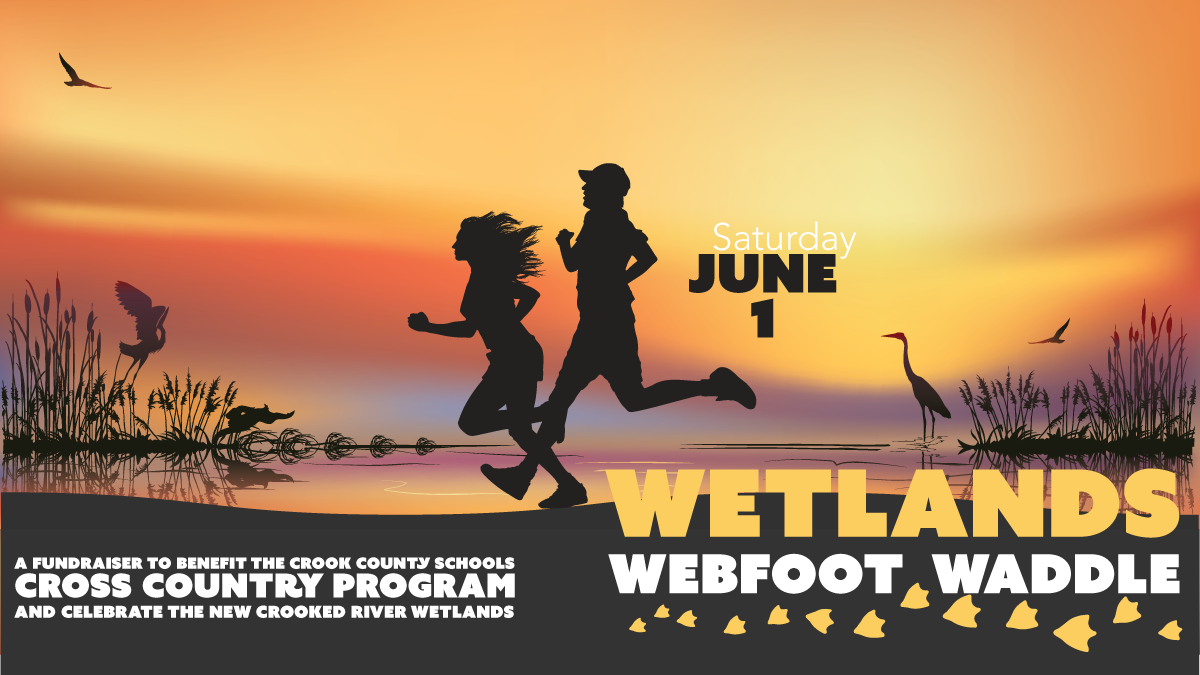 Wetlands Waddle logo 2019